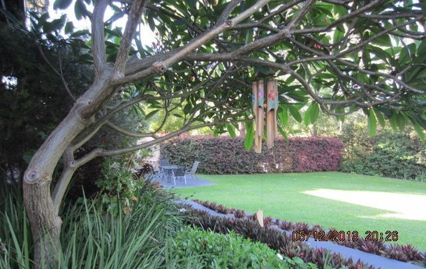 Home exchange in,Australia,COFFS HARBOUR,Lawn at rear of house