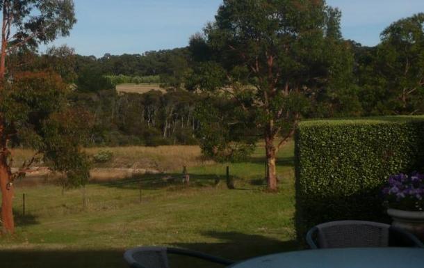 Home exchange in,Australia,ARTHURS SEAT,Kangaroo in house paddock.
