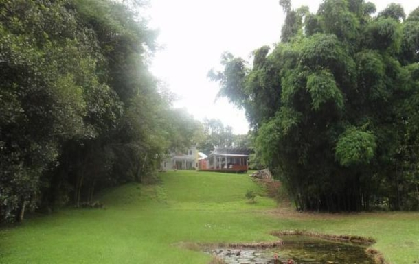 Home exchange in,Australia,BALMORAL RIDGE,View to house from lower flat