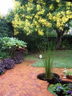 Home exchange in,Australia,ALSTONVILLE,Back garden