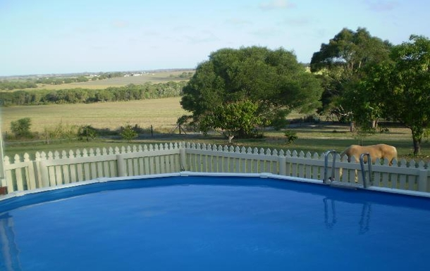 Home exchange in,Australia,CRAIGNISH,House photos, home images