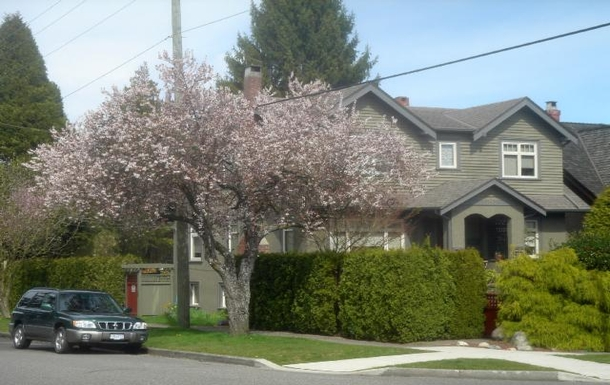 Home exchange in Canada,Vancouver, BC,Canada - Vancouver - House (2 floors+),Home Exchange & Home Swap Listing Image