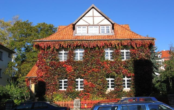 Front in autumn (roof is new by now)