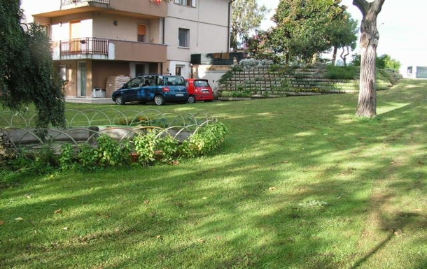 The garden - lower part