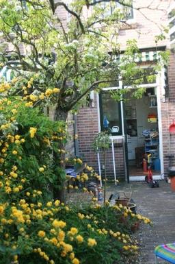 BoligBytte til Holland,Betwn Amsterdam and Sea, 15k,, NH,Netherlands - Betwn Amsterdam and Sea, 15k,,Boligbytte billeder