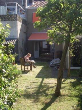 Sunny and green garden