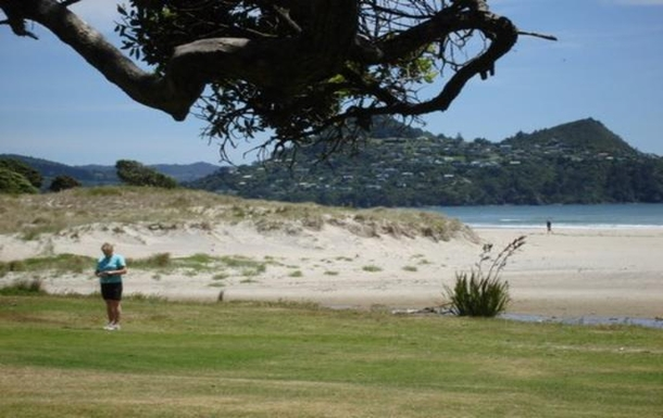 Kodinvaihdon maa Uusi-Seelanti,Pauanui, Coromandel,Coromandel - close to surf beach & estuary,Home Exchange Listing Image