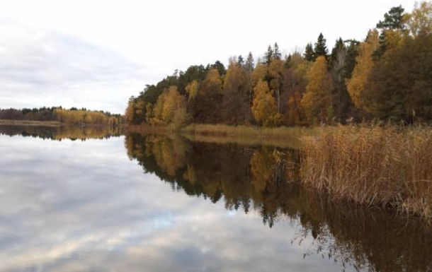 BoligBytte til,Sweden,Stockholm, 30k, NW,A lake nearby with a lot of birds and fish.