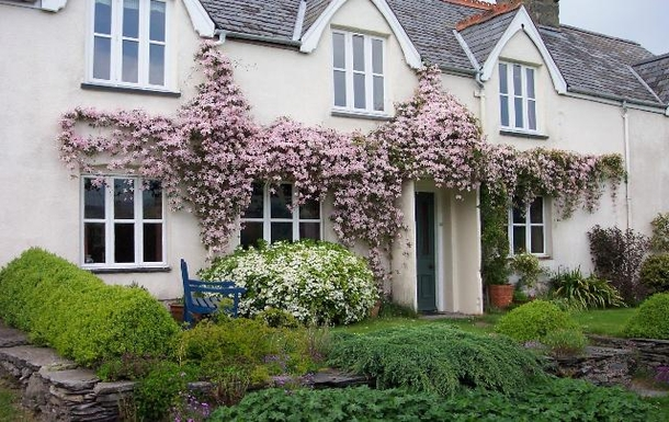 Front of the house with the clematis in full bloom