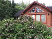 Wohnungstausch in/Finland/Helsinki/Fully furnished summer house with 2 bedrooms