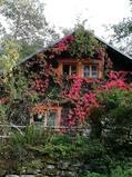 País de intercambio de casas/Germany/Königstein OT Pfaffendorf