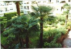 Home exchange in/France/NICE