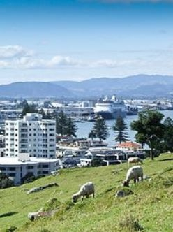 País de intercambio de casas Nueva Zelanda,Tauranga, Bay of Plenty,De Luxe CBD Apartment,Imagen de la casa de intercambio