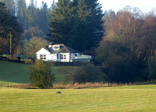Huizenruil in  Verenigd Koninkrijk,Dumfries, Scotland,SW Scotland, Cosy countryside cottage,Home Exchange Listing Image