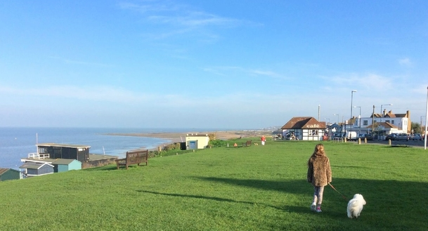 Home exchange in United Kingdom,Whitstable, Kent,Small beach town between London and Paris,Home Exchange & Home Swap Listing Image