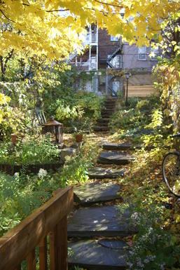 Jardin donnant sur la ruelle commune aux voisins