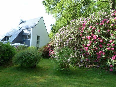 ,Koduvahetuse riik Belgium|Rotselaar