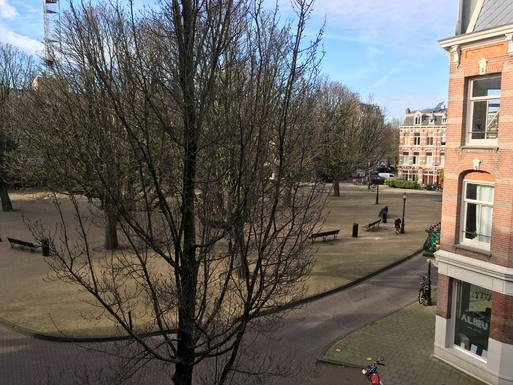 Home exchange in Netherlands,Amsterdam, Noord-Holland,Cozy apartment on a beautiful square,Home Exchange & House Swap Listing Image