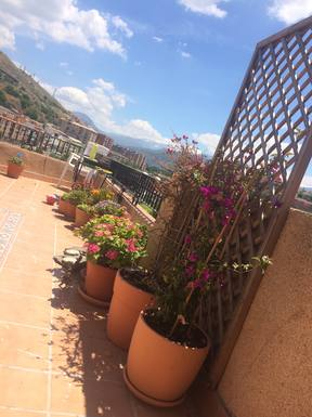 Boligbytte i  Spania,Granada, Andalusien,Perfect location in Granada,Home Exchange & House Swap Listing Image