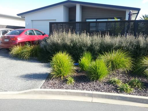Boligbytte i  New Zealand,BOP, Tauranga,New home exchange offer in BOP New Zealand,Home Exchange & House Swap Listing Image