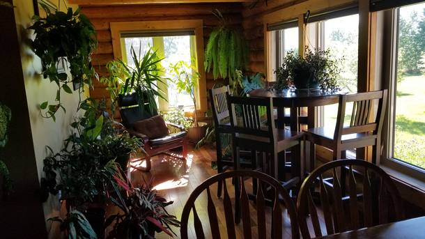 Bostadsbyte i Kanada,Sundre, AB,Beautiful Acreage in the Country,Home Exchange Listing Image