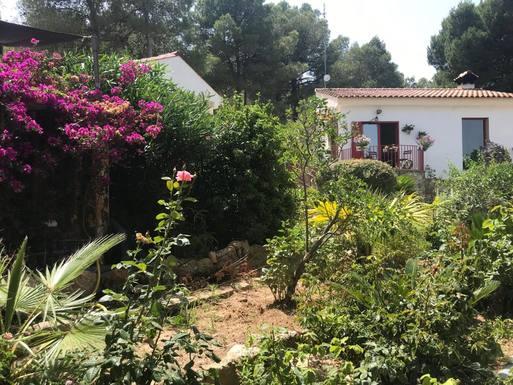Koduvahetuse riik Hispaania,Montserrat, Valencia,New home exchange: Valencia, Spanje,Home Exchange Listing Image