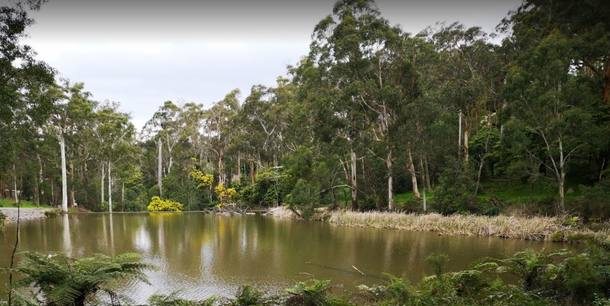 Koduvahetuse riik Austraalia,Belgrave, VIC,New home exchange offer in Belgrave Australia,Home Exchange Listing Image
