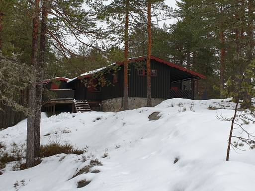 Home exchange in Norway,Bø i Telemark, Telemark,Cabin close to Lifjell,Home Exchange  Holiday Listing Image