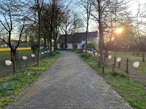 ,Home exchange in Belgium|Antwerpen