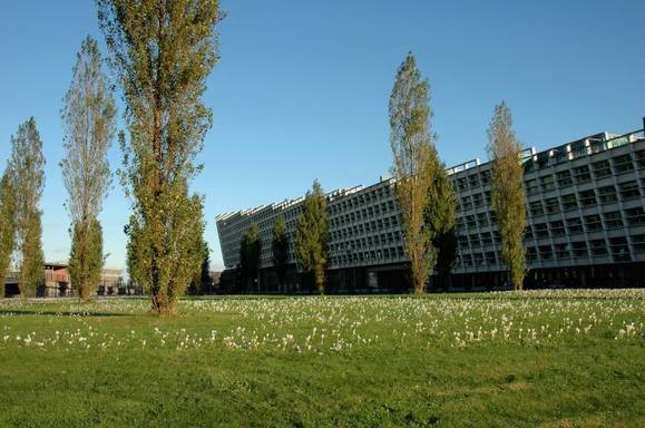 BoligBytte til Holland,Amsterdam, Noord Holland,Nice house with a garden in Amsterdam East,Boligbytte billeder