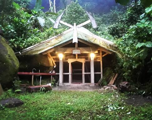 Home exchange in Costa Rica,Tinamaste, Perez Zeledon / San Jose,Vallhal in the Jungle,Home Exchange & Home Swap Listing Image