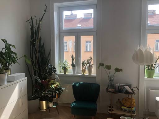 Bostadsbyte i Österrike,Wien, Wien,Neue bezogene Altbauwohnung in Wien-Ottakring,Home Exchange Listing Image