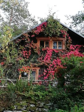 BoligBytte til Tyskland,Königstein OT Pfaffendorf, DEUTSCHLAND,Haus für Natur -und Bergliebhaber,Boligbytte billeder