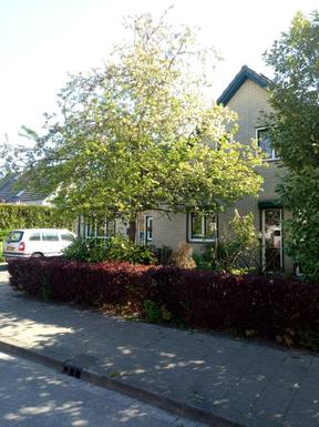 País de intercambio de casas Países Bajos,ELST GLD, 15,Beautiful detached house in Elst, Gelderland,Imagen de la casa de intercambio