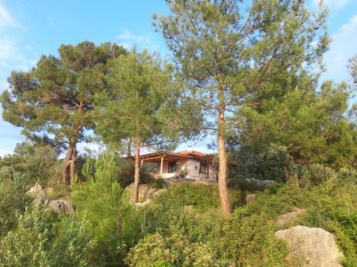 Boligbytte i  Tyrkia,Patara - Kas - Antalya, Antalya,garden keeping needed West Turkey,Home Exchange & House Swap Listing Image