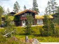 Home exchange in Norveç,Veggli, Buskerud,Comfortable log vacation house,Home Exchange Listing Image