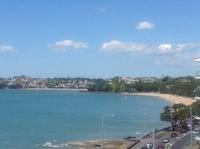 Kohimarama beach view from apartment