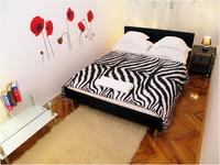 Home exchange in Hırvatistan,split, croatia,CENTRAL COZY APARTMENT,Home Exchange Listing Image