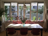 Koduvahetuse riik Holland,Amsterdam, Noord-Holland,Quiet & cosy apartment in downtown Amsterdam,Home Exchange Listing Image