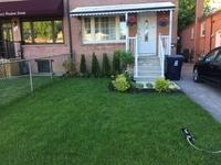 Kodinvaihdon maa Kanada,Toronto, Ontario,Semi-detached Home for Exchange in Toronto,Home Exchange Listing Image