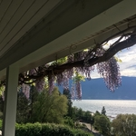 BoligBytte til Canada,LAKE COUNTRY, B.C,Gorgeous home and views of lake,Boligbytte billeder