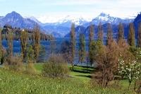 Home exchange in Switzerland,Luzern, Schweiz,New home exchange in lucerne,Home Exchange & House Swap Listing Image