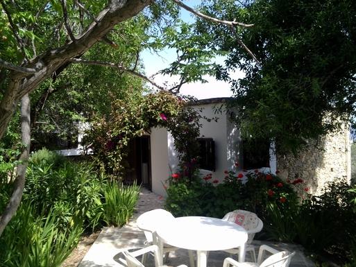 Home exchange in,Cyprus,Karaman,Back entrance and garden