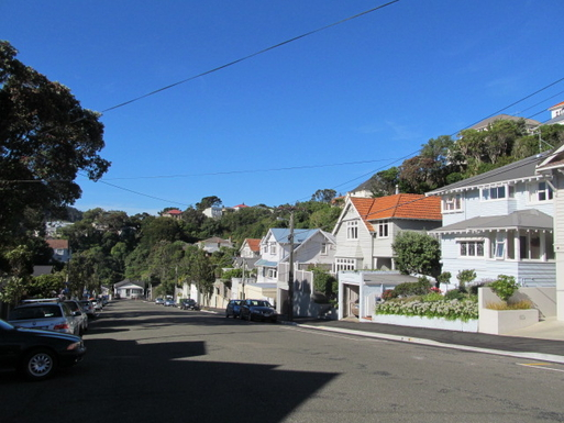 BoligBytte til,New Zealand,Wellington,Our quiet street is used only by locals
