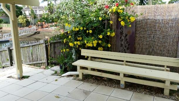 Home exchange in,Australia,Currumbin Waters, Gold Coast,Alamanda flower near bench in back yard.