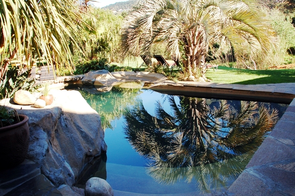 BoligBytte til,South Africa,Hout Bay / Cape Town,Our pool