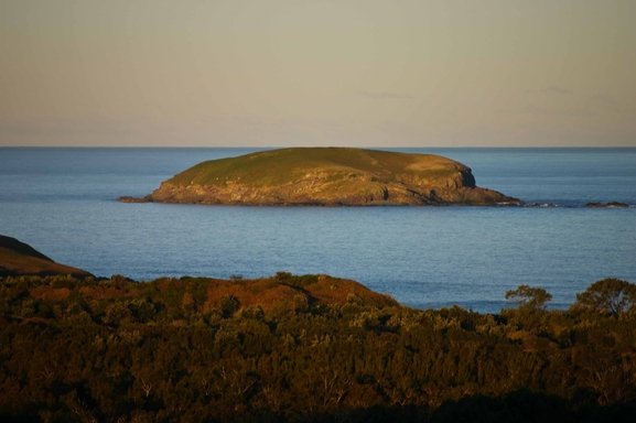 Home exchange in,Australia,Sandy Beach,South West Solitary (Grouper) Island from house. (