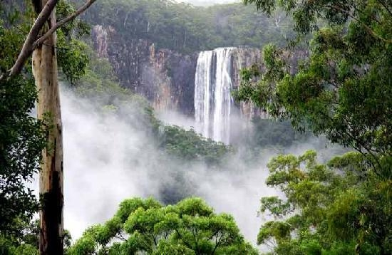 Home exchange in,Australia,Kingscliff,Purlingbrook Falls - Springbrook National Park.