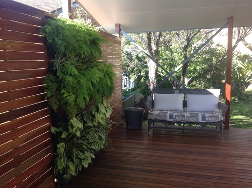 Home exchange in,Australia,MAIANBAR,Our wall garden on the back deck