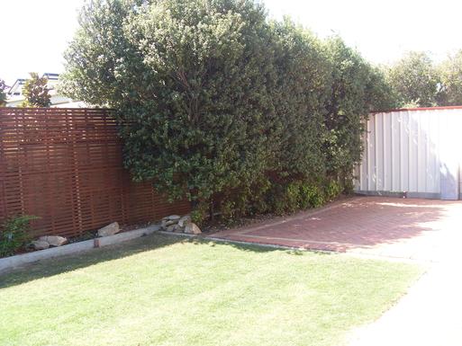 Home exchange in,Australia,MARION,Garden